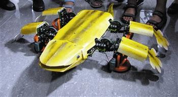 可代替高空『助理人』-机器人-北方网-新临沂室内设计蜘蛛v助理图片